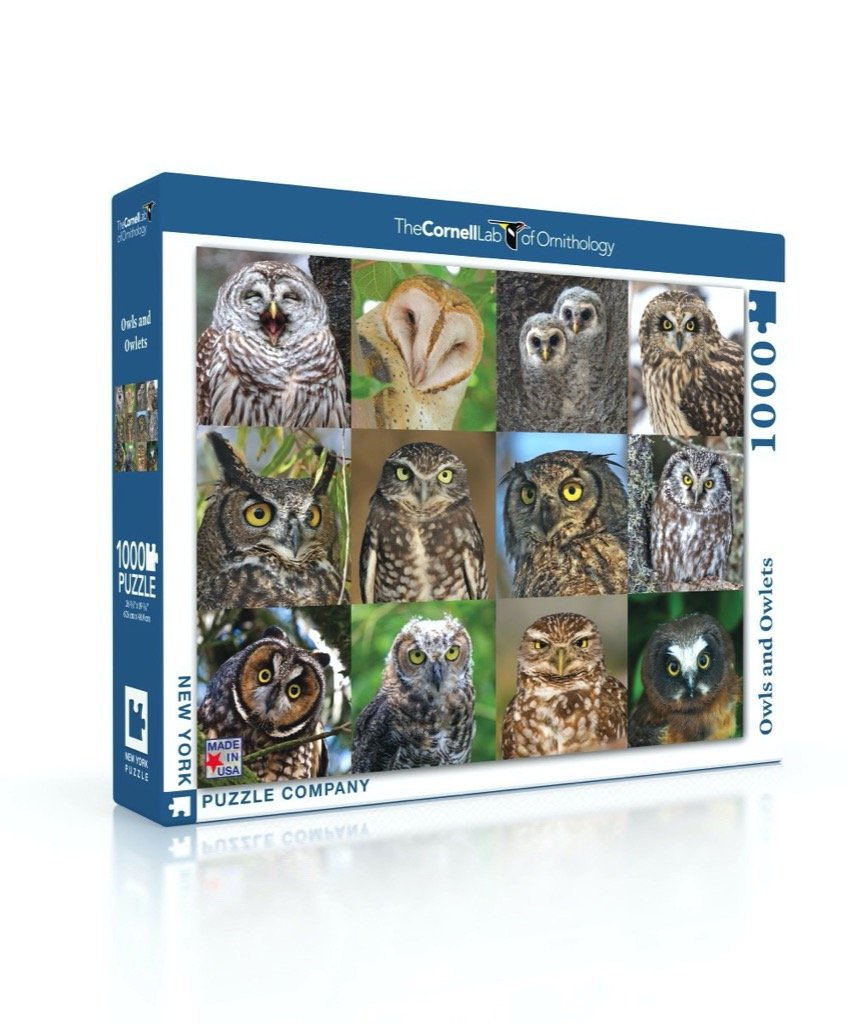 Owls and Owlets Puzzle