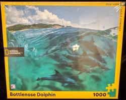 Bottlenose Dolphin 1000 pcs Jigsaw Puzzle